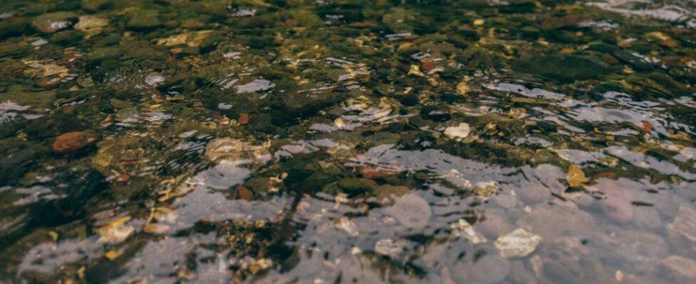 Montana - Water 10
