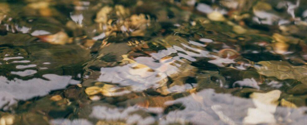 Montana - Water 11