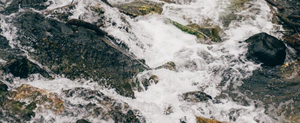 Montana - Water 12
