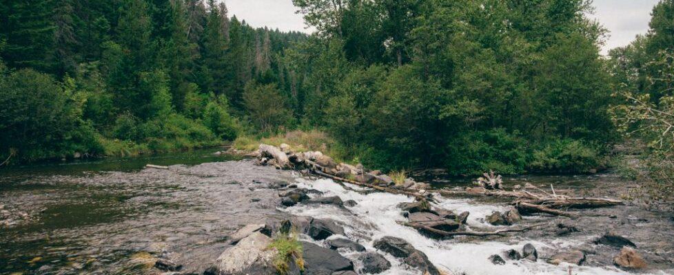 Montana - Water 2