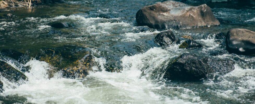 Montana - Water 24