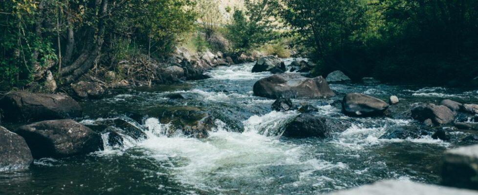 Montana - Water 25