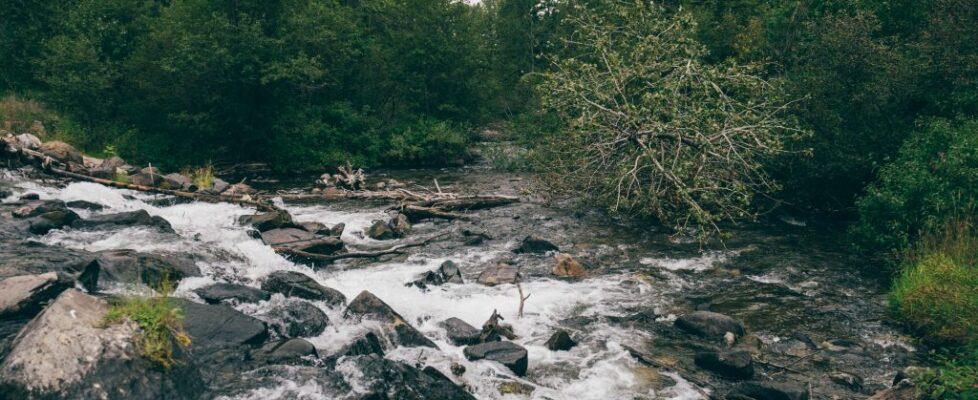 Montana - Water 5